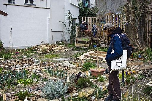 Agriculture urbaine au Mans